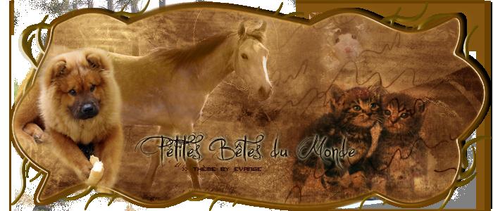 Petites Bêtes du Monde - Page 2 I_logo