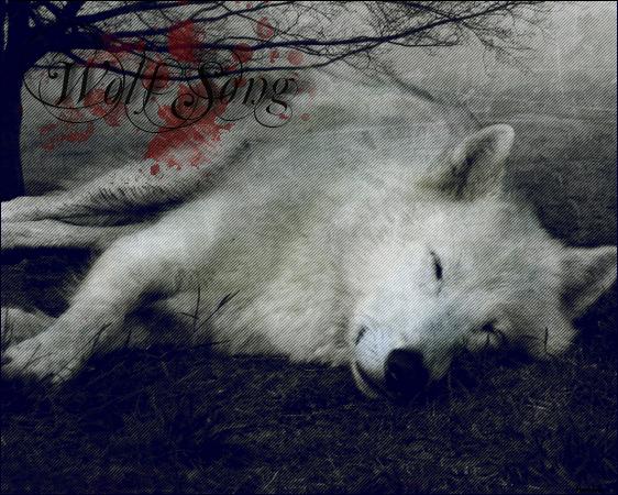 Wolf Life - La Guerre Sera Rude ... I_logo