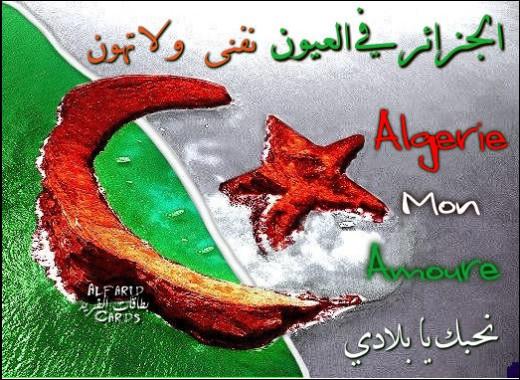 صور كريم زياني I_logo
