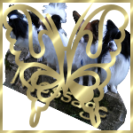 Thèmes Fêtes/Anniversaire/Toutes les fêtes du calendrier I_folder_locked_big
