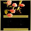 Theme Amitié / Mode/Zen I_folder_sticky