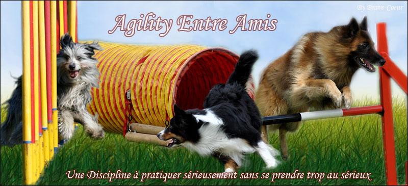 Agility Entre Amis