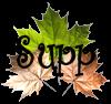 Débutants : 40 cours pour PaintShop Pro I_icon_delete